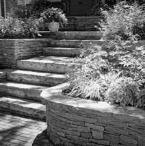 The Evolution of Landscaping